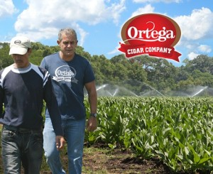 ortega farms